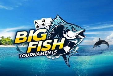 Daily Big Fish Series 888poker