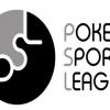 Индийская покерная лига заключила контракт с телекомпанией Dsport